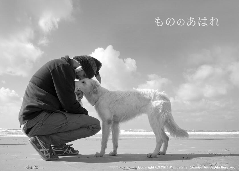 mono_no_aware021.jpg
